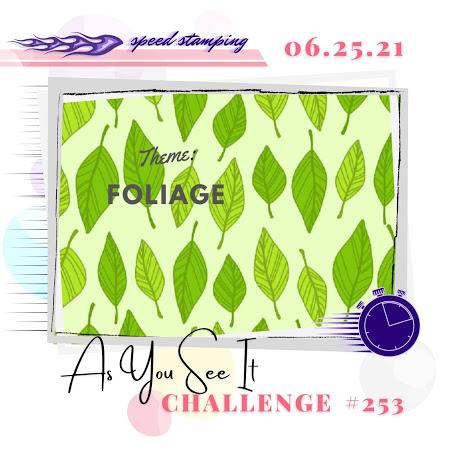 challenge 253 1