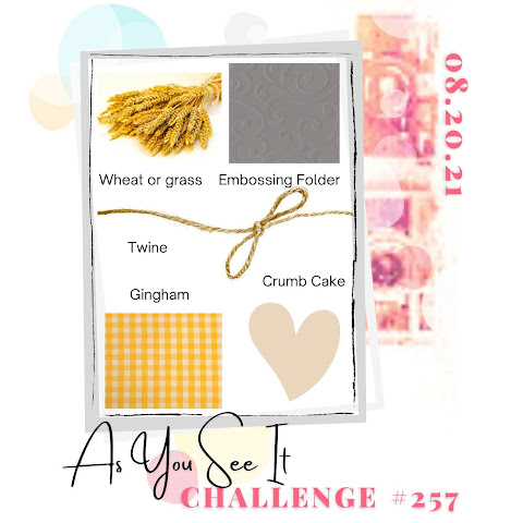 challenge 257